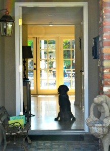 JJ's boundary is the front door